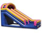 20' Single Lane Backyard Slide Rental