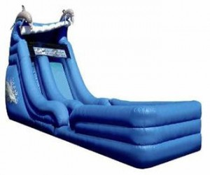 18' Dolphin Super Splash Down Water Slide w/Landing Rental
