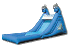 16' Dolphin Super Splash Down Water Slide w/Pool Rental